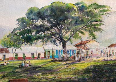 Samán de la Plaza Central de Villavicencio, años 30 (interpretación de fotografías de Horst Martin) 46 cm x 31 cm